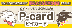 DMはがき:P-card